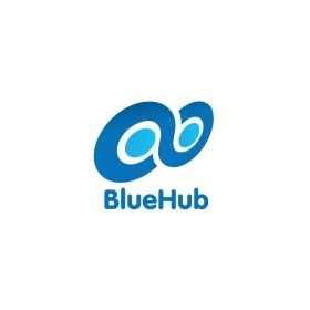 BlueHub IT Consultants